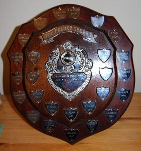 The Palmer trophy, shield, awarded to the best in show